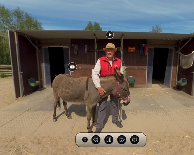 VR-Anwendung: Eselei Bergedorf