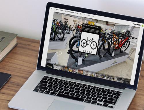 Virtual Shopping – Die E-Commerce Revolution?